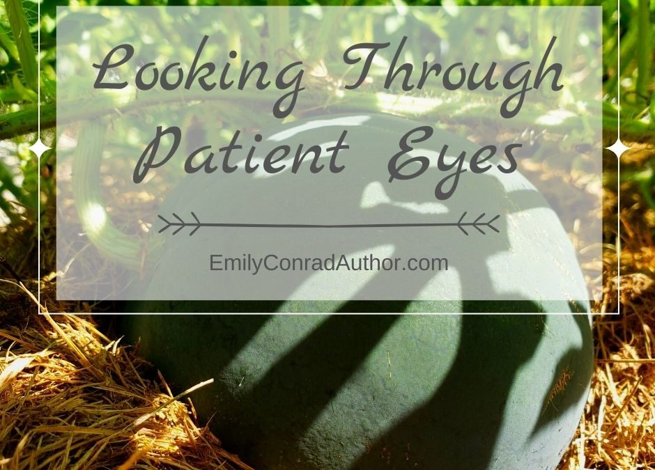 Looking Through Patient Eyes