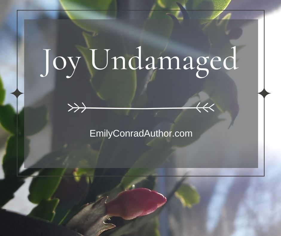 Joy Undamaged